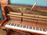 Настройка пианино, рояля, предосмотр перед покупкой и ремонт